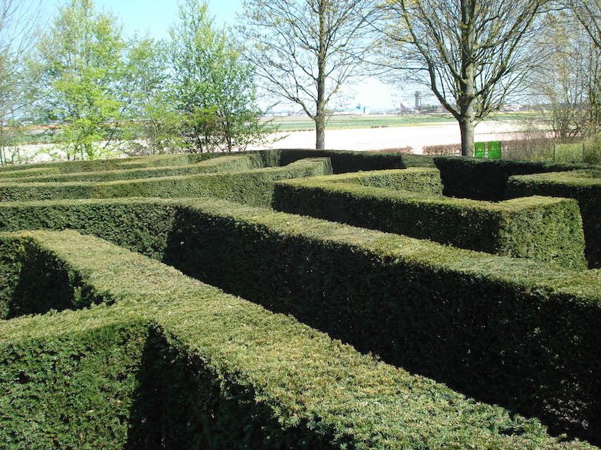 labyrinthe-vegetal_toutpourchanger